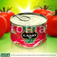 Cano Traditional Tomato Paste 70gr 100