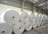 Woven Polypropylene Fabric In Rolls