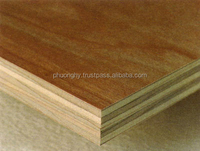 Top of the highest quality plywood from Vietnam