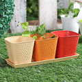 Colorful Garden Planter With Base 4 Pcs