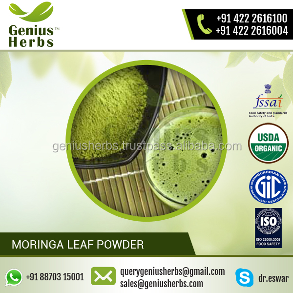 Natural and Pure Organic Moringa Leaf Powder from GMP Certified Company