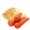 Spray Dried Carrot Powder