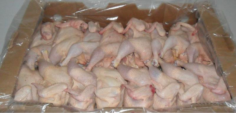 Best Price Frozen Chicken Leg Quarters from Wholesale Supplier