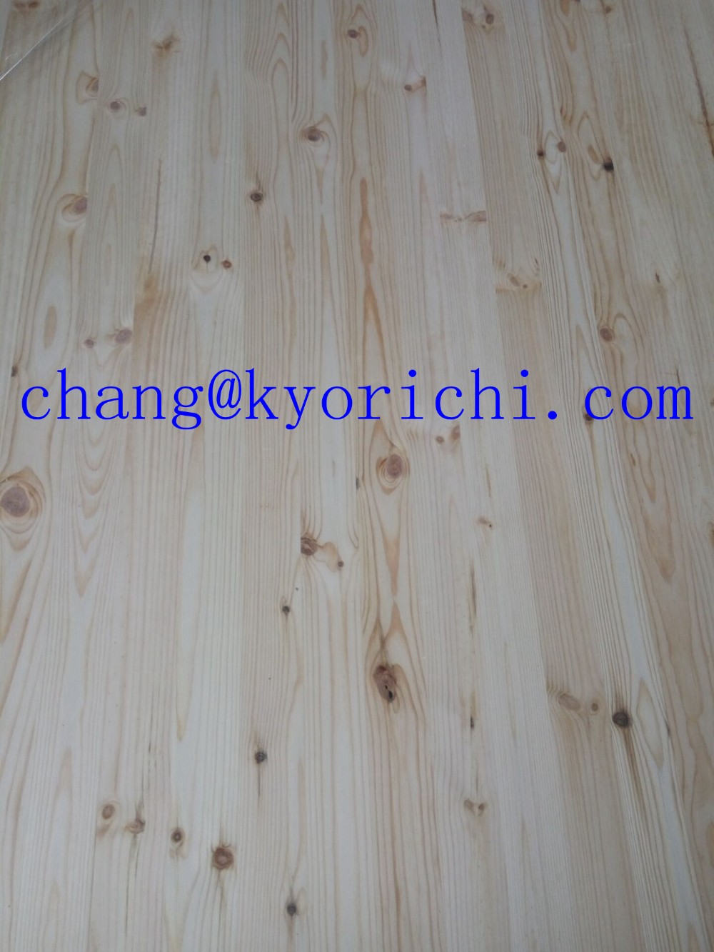 Red Pine Eage Guled Knotty Panel