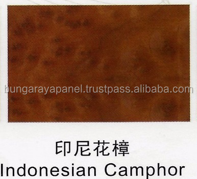 Special Species - Indonesian Camphor