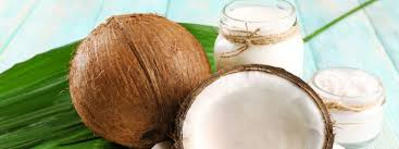 FRESH COCONUT PRICE- YOUNG COCONUT - FRESH COCONUT HIGH QUALITY