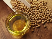 Crude Soybean Oil Price