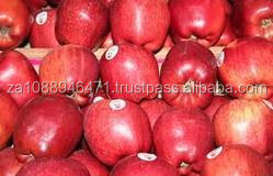 Red fuji apples/Fresh Huaniu apple fruit for sale