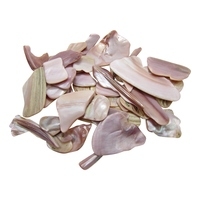 Pink Mussel Shell Pieces - Tumbled - Satin or Natural