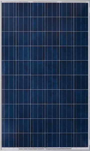 Yingli 255w UK Stock custom cleared Lancashire