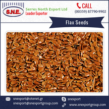 Direct from Factory 100% Natural Flax Seed from Trusted Supplier