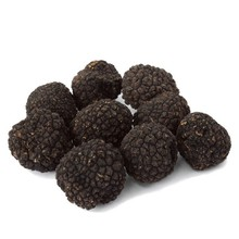 Quality fresh black and white truffle