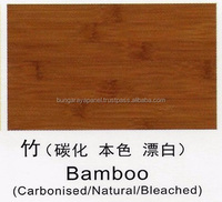 Chinese Species - Bamboo