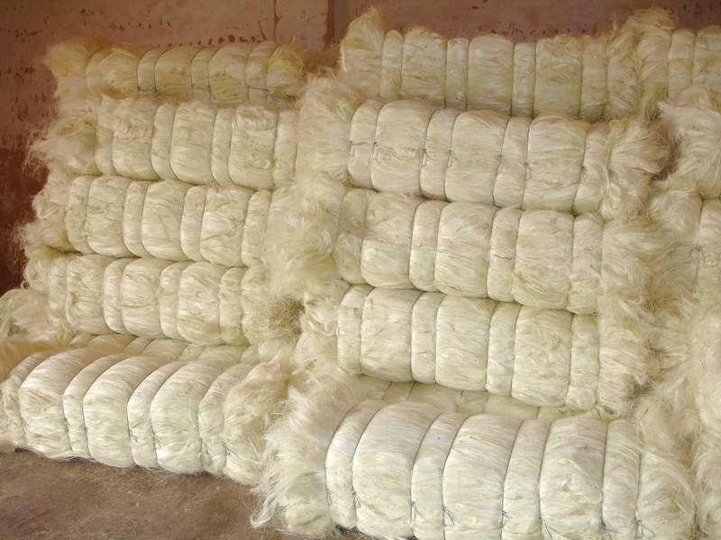 Natural raw sisal fiber/sisal fibre,Raw Pattern and Other Fiber Product Type sisal