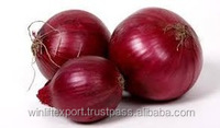 onions for china