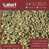 Best Price Quality Green Arabica Coffee