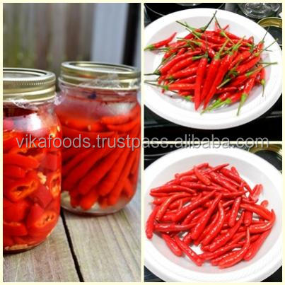 Vietnam Canned Chili - HIgh Quality - Best Price