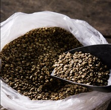 Arabica coffee beans and instant coffee with competitive price Grade A from Thailand,