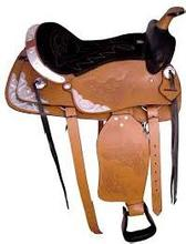 Leather Shoes / Leather Belts / Leather horse Saddlery / Gloves / Jacket