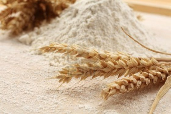 Wheat Flour for Sale and Ready for Shipment
