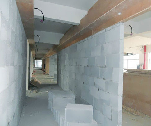 CELLULAR LIGHT WEIGHT CONCRETE BLOCKS ( CLC )