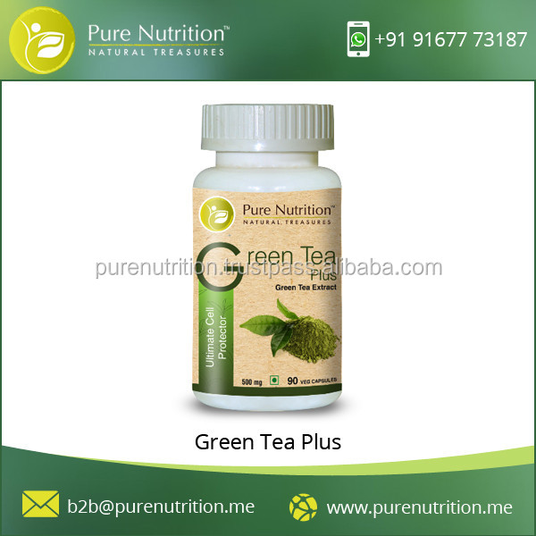 High Food Grade Green Tea Capsule Available for Antioxidant Protection