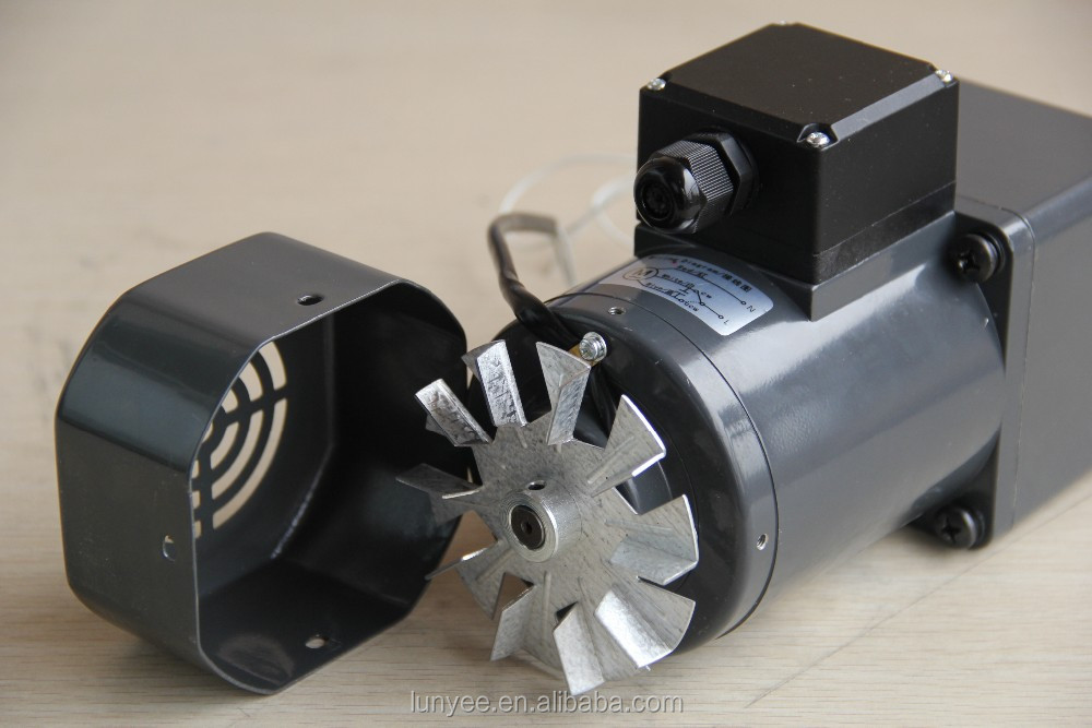 High torque low rpm small powerful ac electric motors for Small electric motor gears