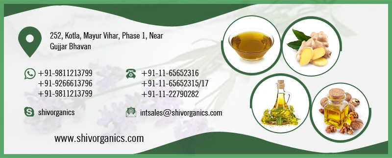 Buy Cold Pressed Trusted Supplier of Sesame Oil in Bulk