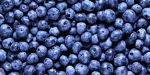 freeze fresh blueberries wholesale artificial blueberries