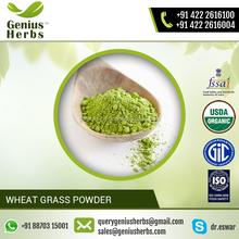 Rich Dietary Supplement of Wheat Grass Powder from Top Manufacturer