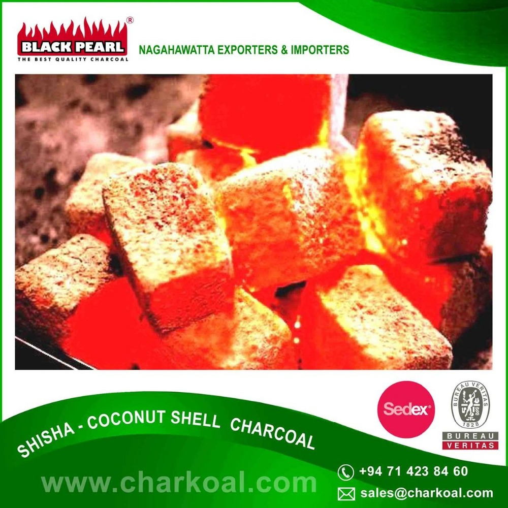 Shisha Coconut Shell Charcoal Not A Single Tree Is Cut Down