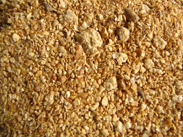 Top Quality Soybean Meal For Animal Feed