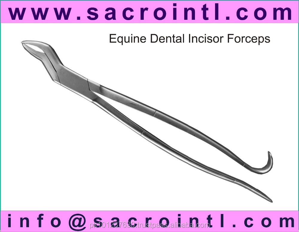 Equine Dental Incisor Forceps Veterinary Instruments
