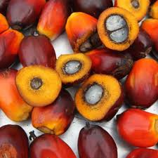 Crude Red Palm Oil and refined Palm oil