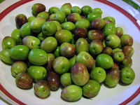 Spain High Quality and Best Quality Fresh Olives