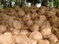 Indian Pure quality coconut exporters