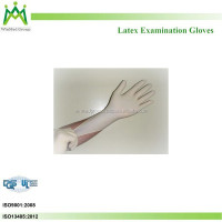 High density polyethylene disposable plastic glove PE disposable gloves examination gloves
