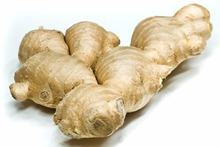 Fresh ginger for buyer at competitive price