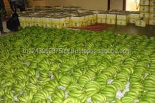GREEN PREMIUM FRESH CAVENDISH BANANAS