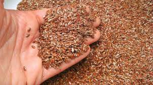 High Quality Linseeds Supplier with High Nutritional Values in India