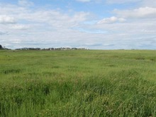 160 Acres of Beautiful Canadian Land