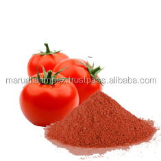 GMP Approved Dehydrated Tomato Powder