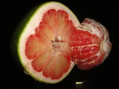 Cheap green Pomelo-high quality for sales and export
