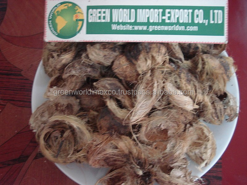 Dried Betel nut, good cut, good price for now