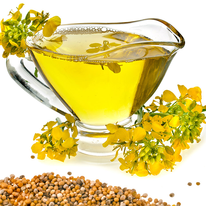 Premium Quality Crude / Refined Canola Oil / rapeseed oil Incredible Price