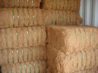 Indonesian Coconut Coir Fiber