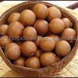 Macadamia nut , Oak Acorns , Para Nut