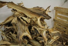 Stock Fish / dried StockFish heads/ cod head for sale .