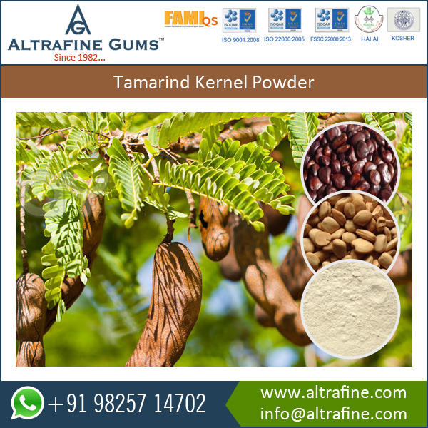 High Grade Product Deoiled Tamarind Kernel Powder at Affordable Price