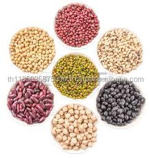 The top popular America round Light speckled kidney bean different types of
